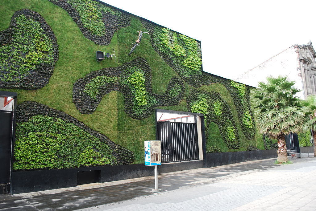 Green wall at the Universidad del Claustro de Sor Juana in the historic center of Mexico City